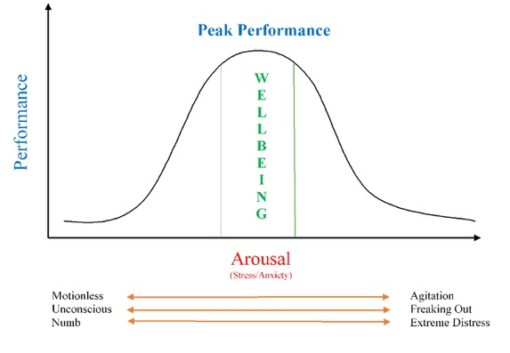 arousal and wellbeing expanded