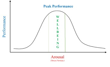 arousal and wellbeing