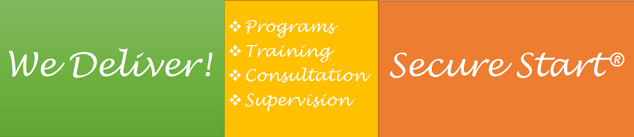 Training Project Implementation Consultation Trauma-Informed